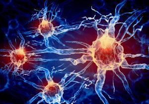 Damaged Nerves